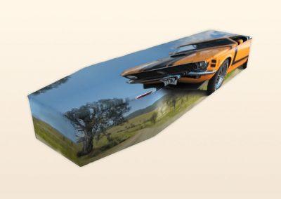 AB437 Fast Cars