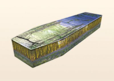AB237 Bluebell Wood